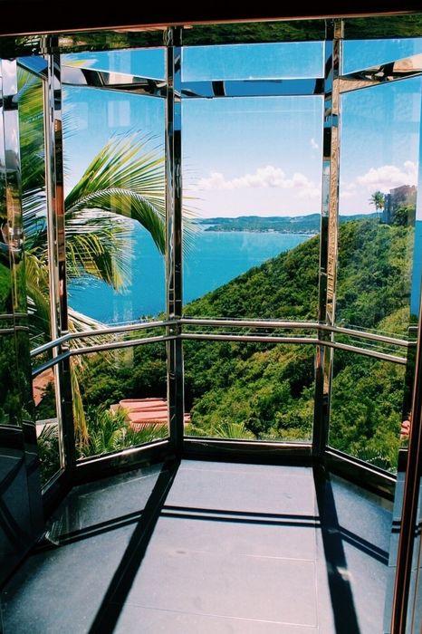 window view ocean forest
