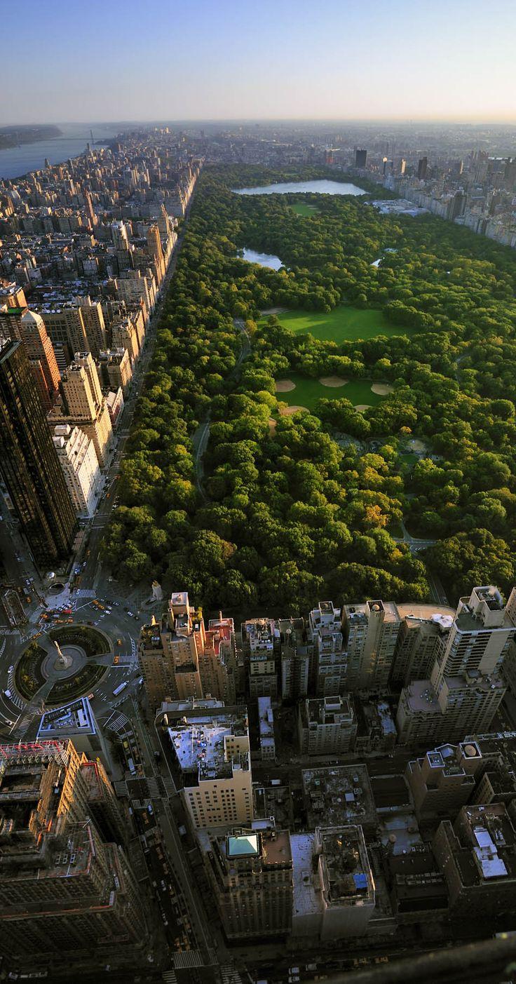 newyork park skyscrapers view