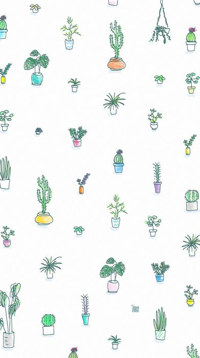 backgroung kaktus print green
