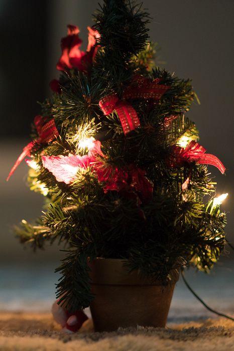 christmastree small lights