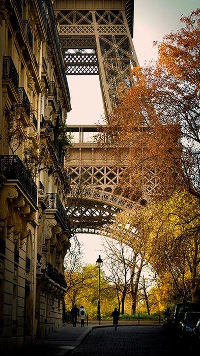 eiffel tower autumn street