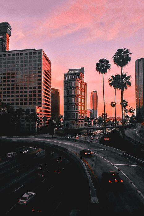 city sunset palms traffic cars