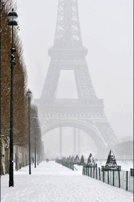 eiffel tower winter