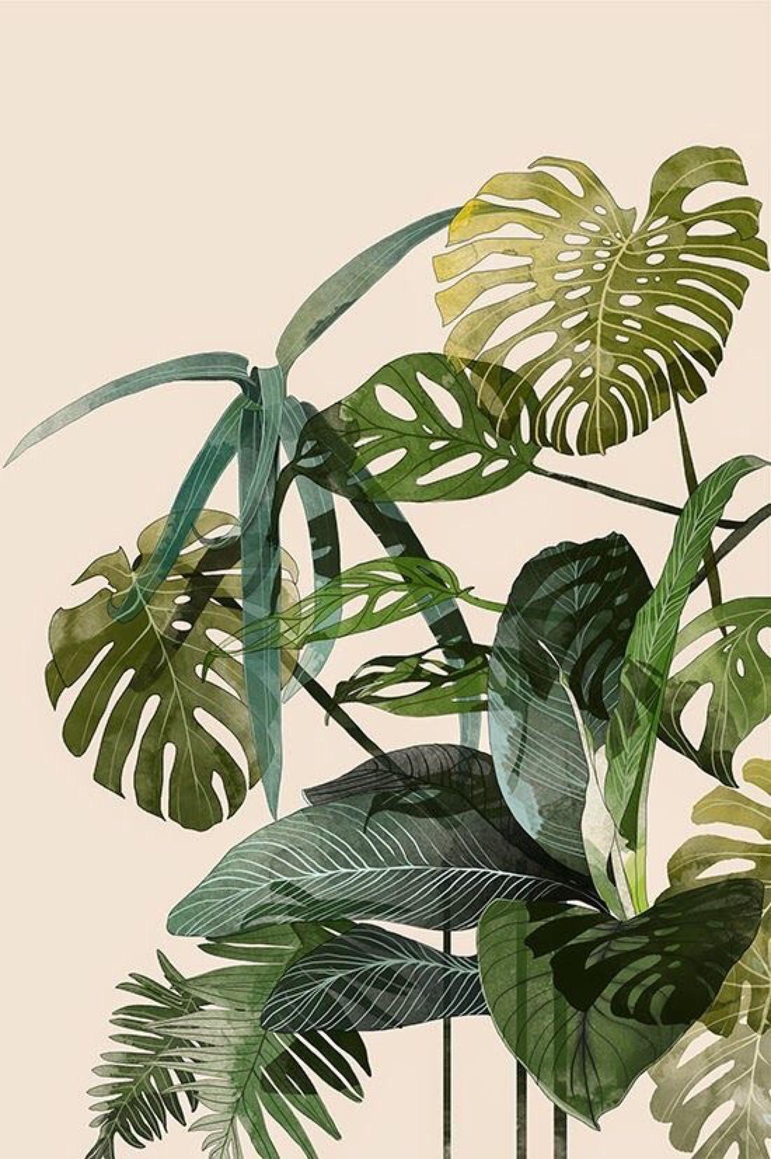 leaves green background wallpaper