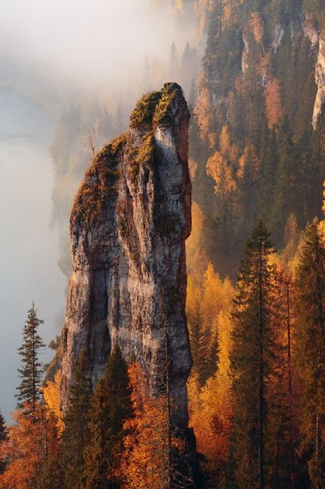 nature autumn rocks trees