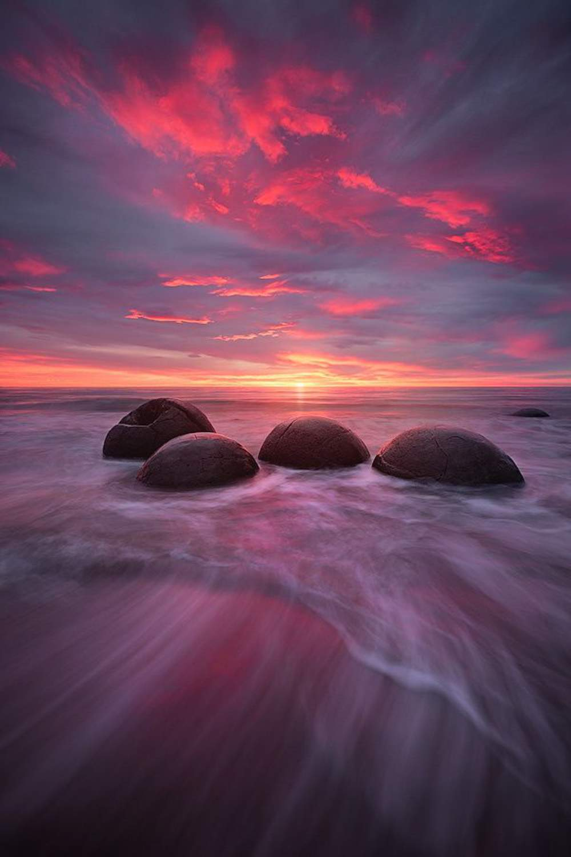 sunset sun beach sky sunrise ocean burds water landscape