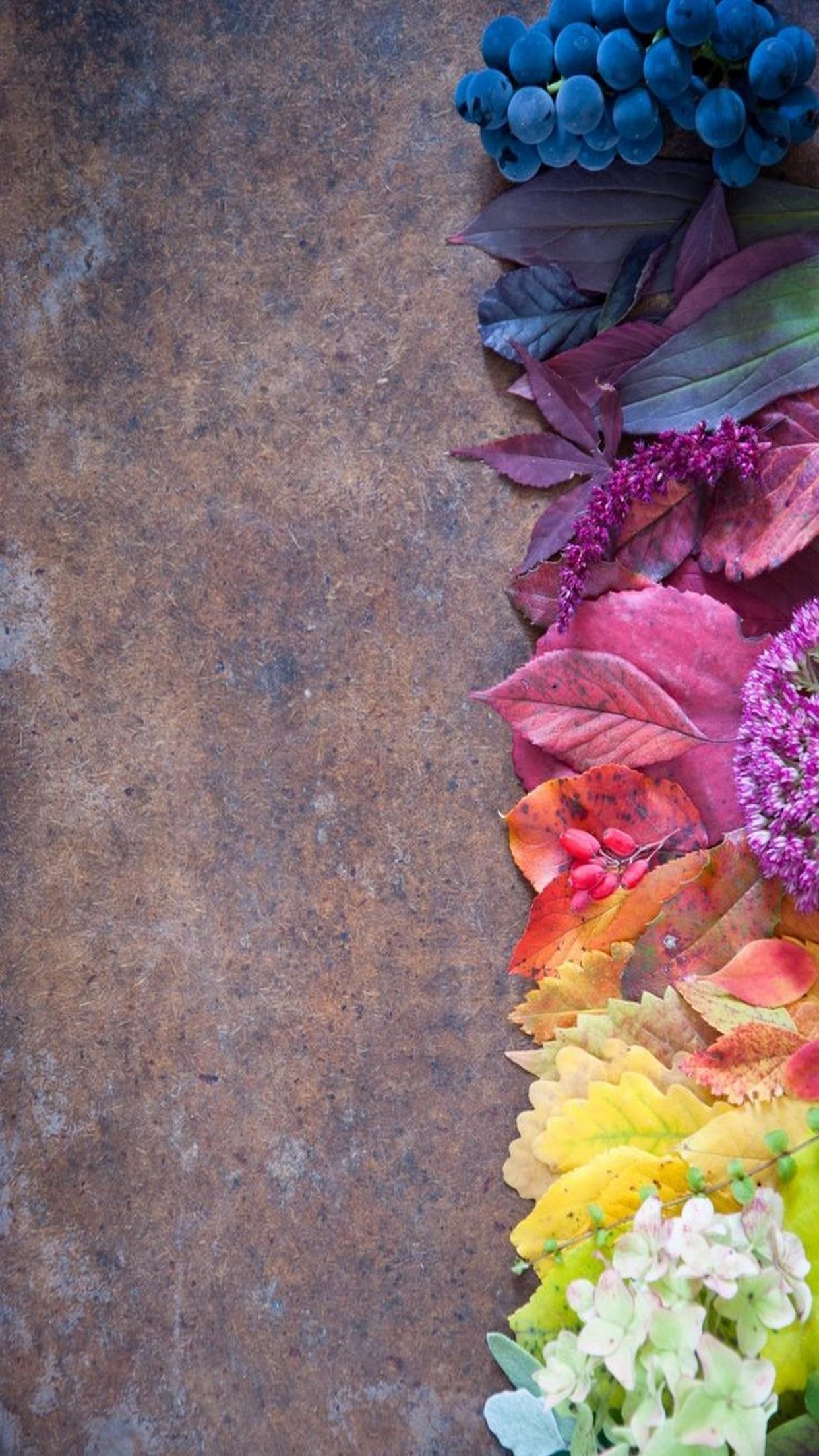 leaves colorfull background wallpaper