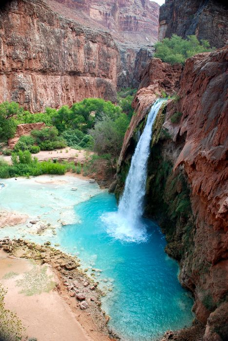 havasu falls hike