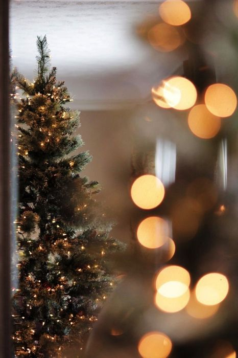 christmastree lights window
