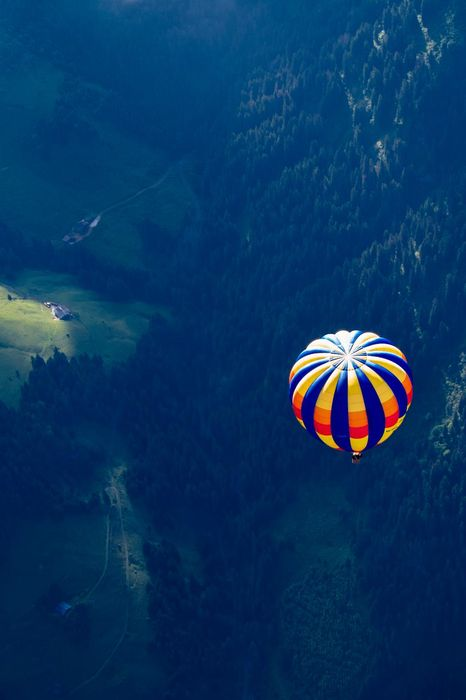 forest high balloon yellow blue fligh