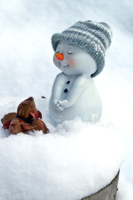 cute snowman hat snow