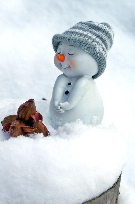 cute snowman hat snow