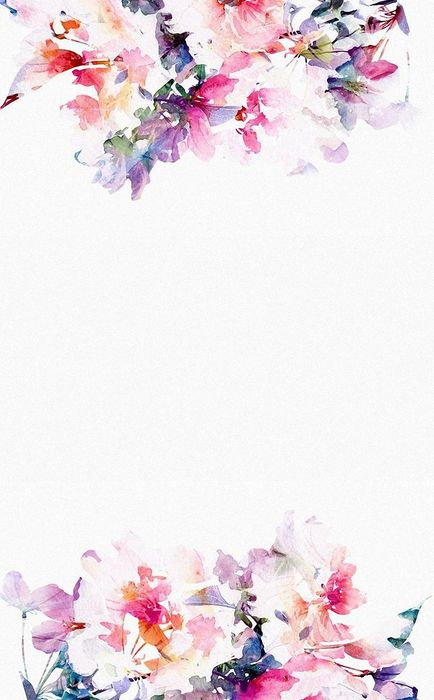 flowers pink white background wallpaper