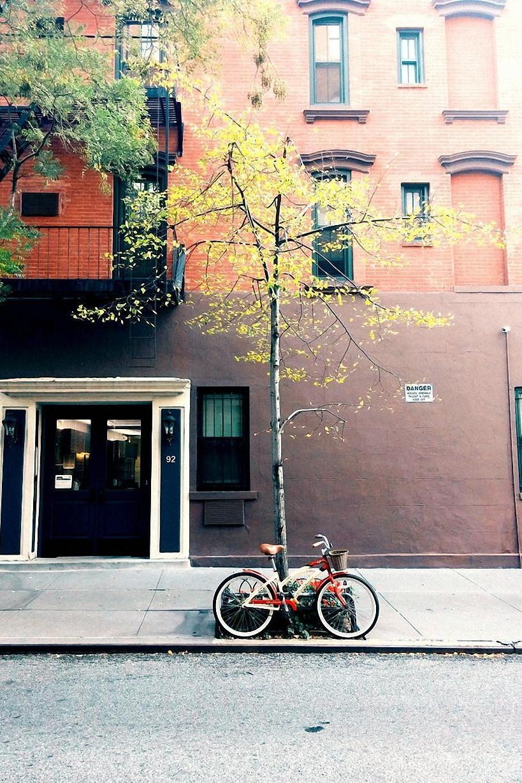 street bike tree facade
