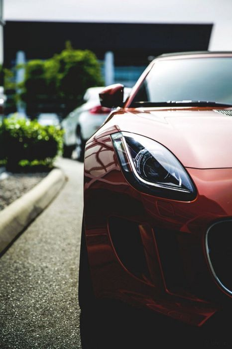jaguar ftype sportcar red macro