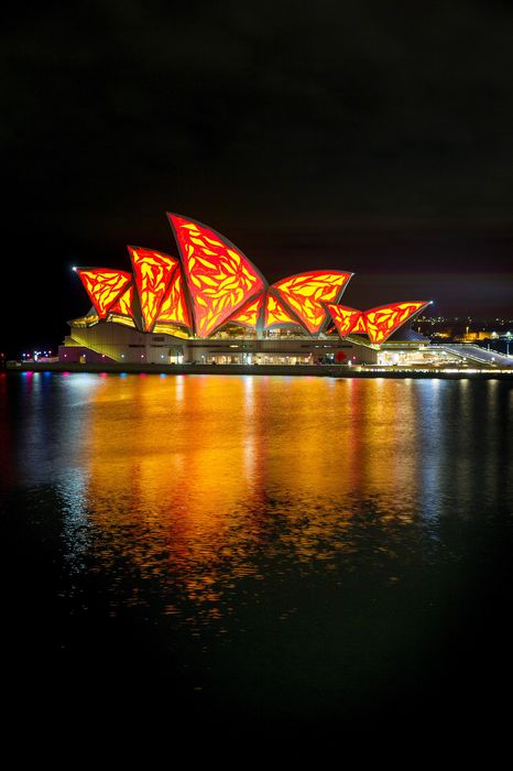 sydney sydney opera house lights water bay