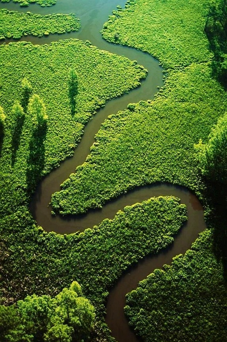 river green trees curve