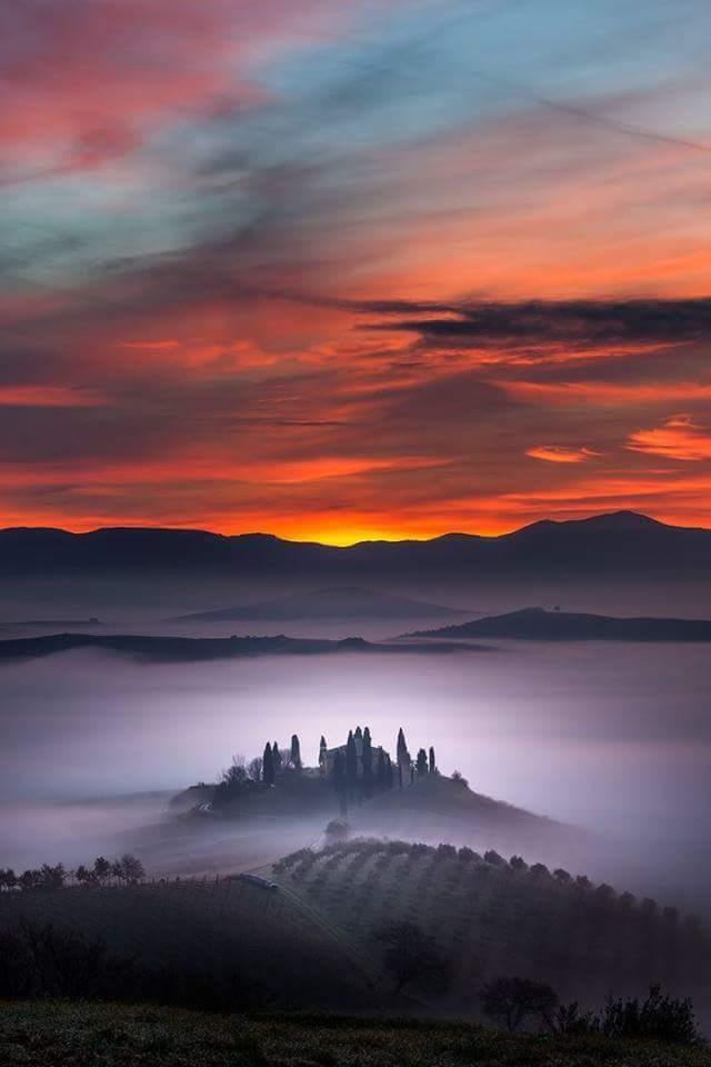 sunset sky fog trees