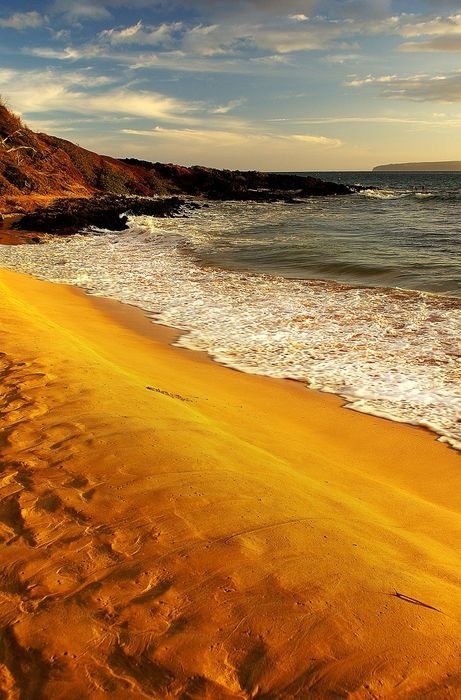 hawaii gold sand beach