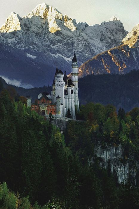 castle neuschwanstein germany mountain forest