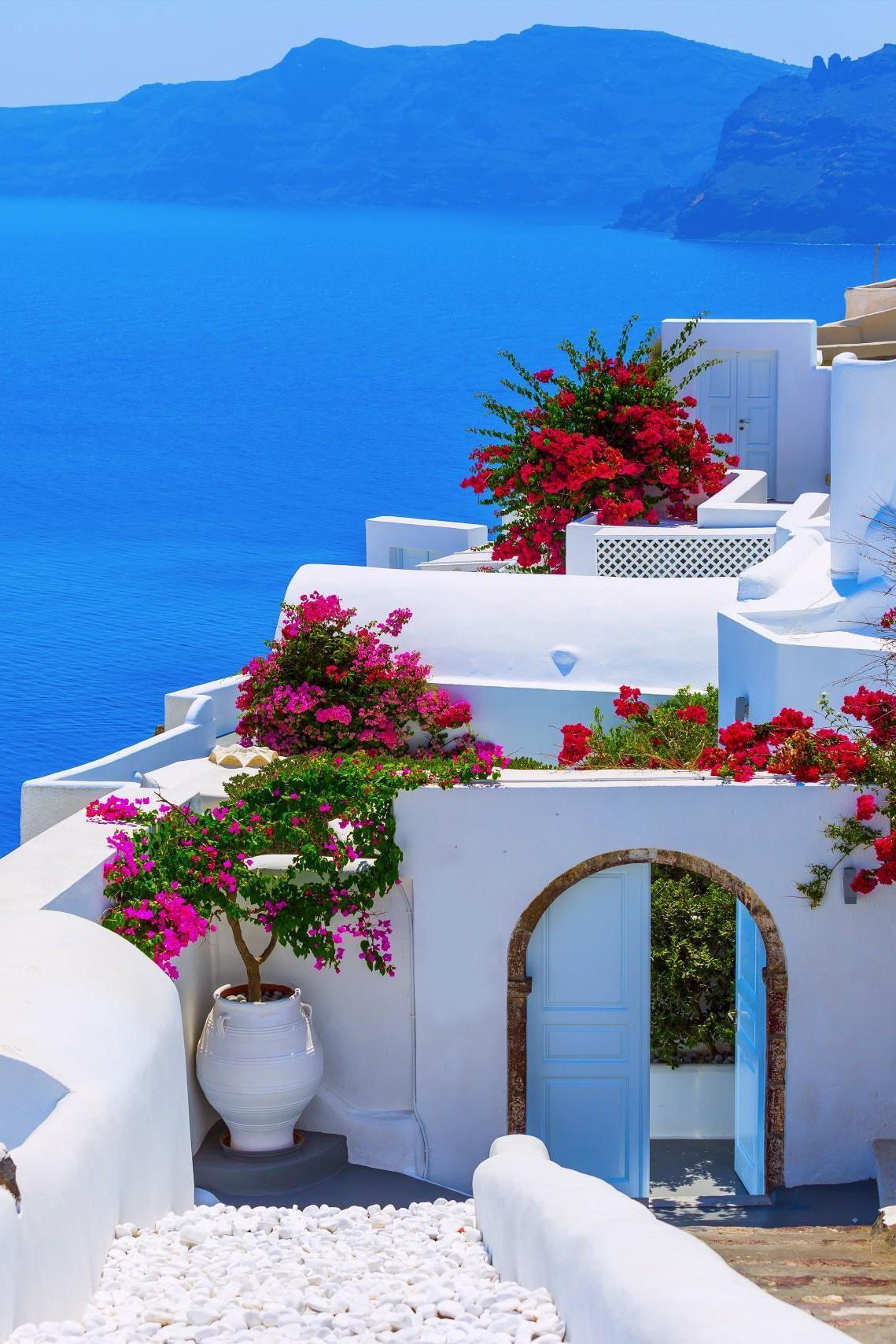 greece santorini white house flowers sea