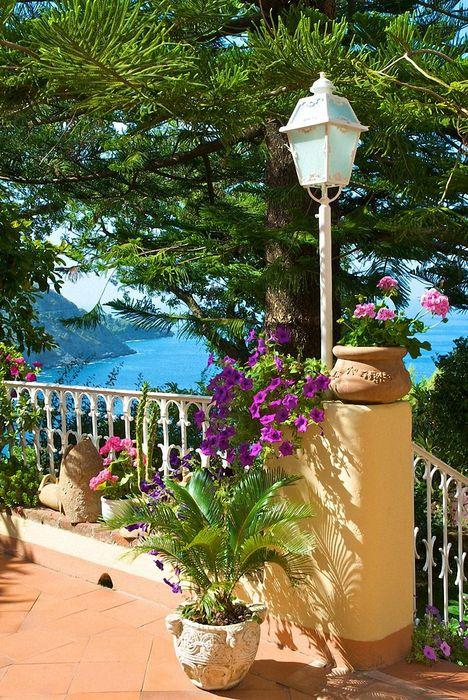 greece flowers sun sea summer