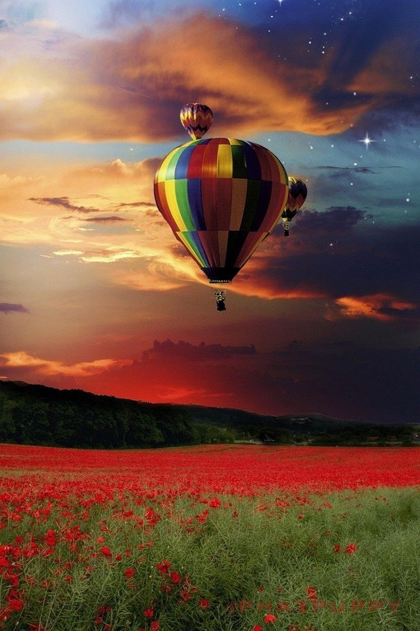 sky air balloon sunset