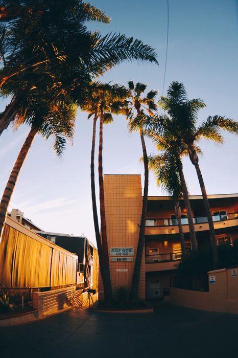 palms house sunset 1280x1920