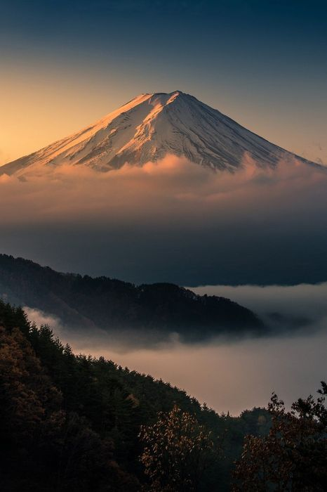 volcano fog forest snow