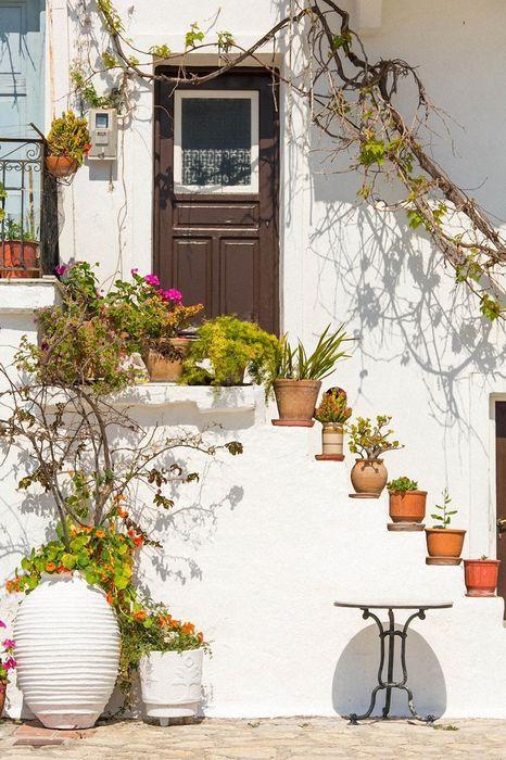 white house flowers greece door