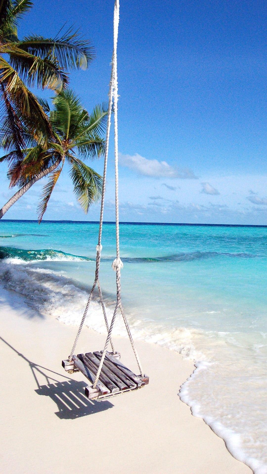 beach swing palm tree