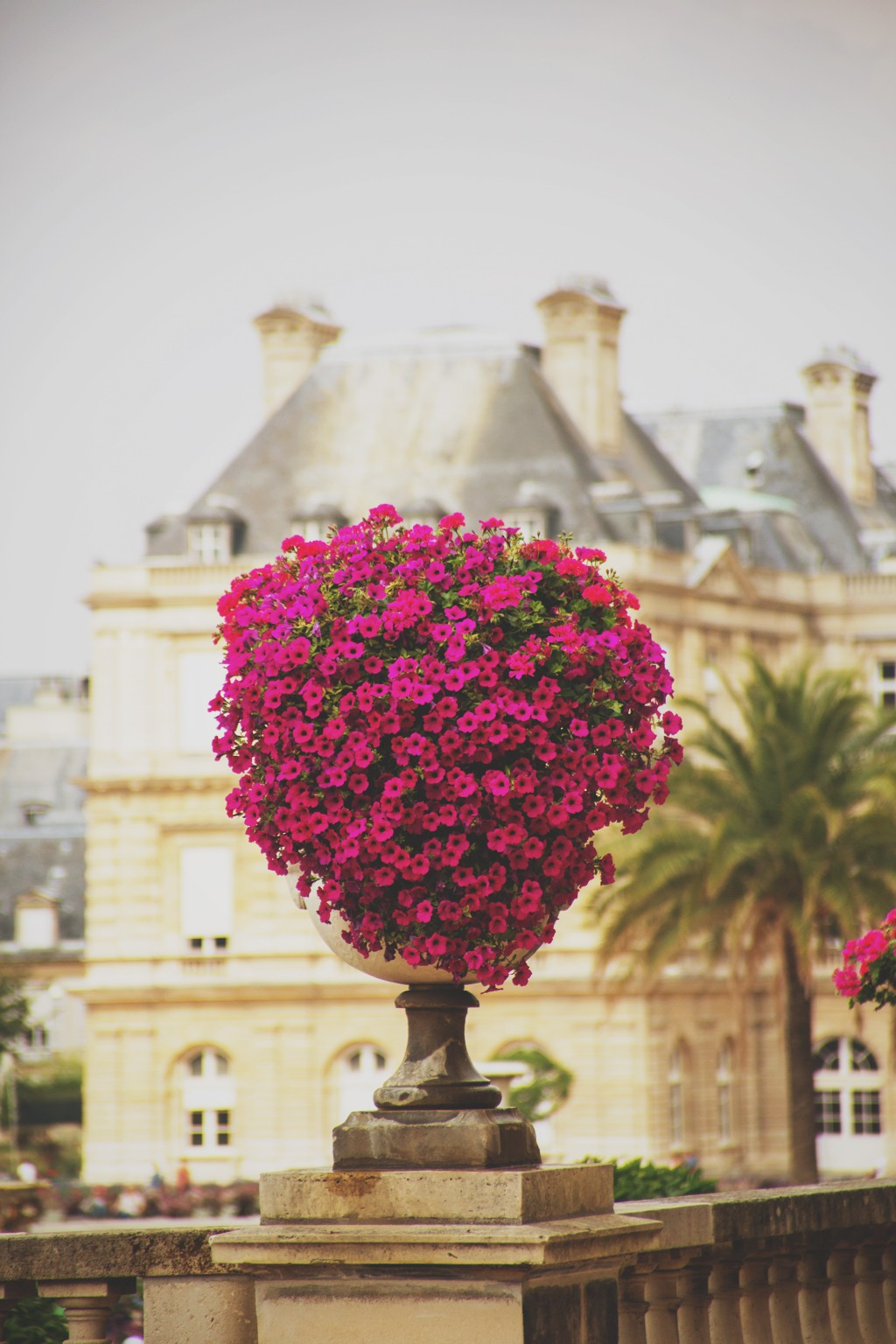 flowers building france