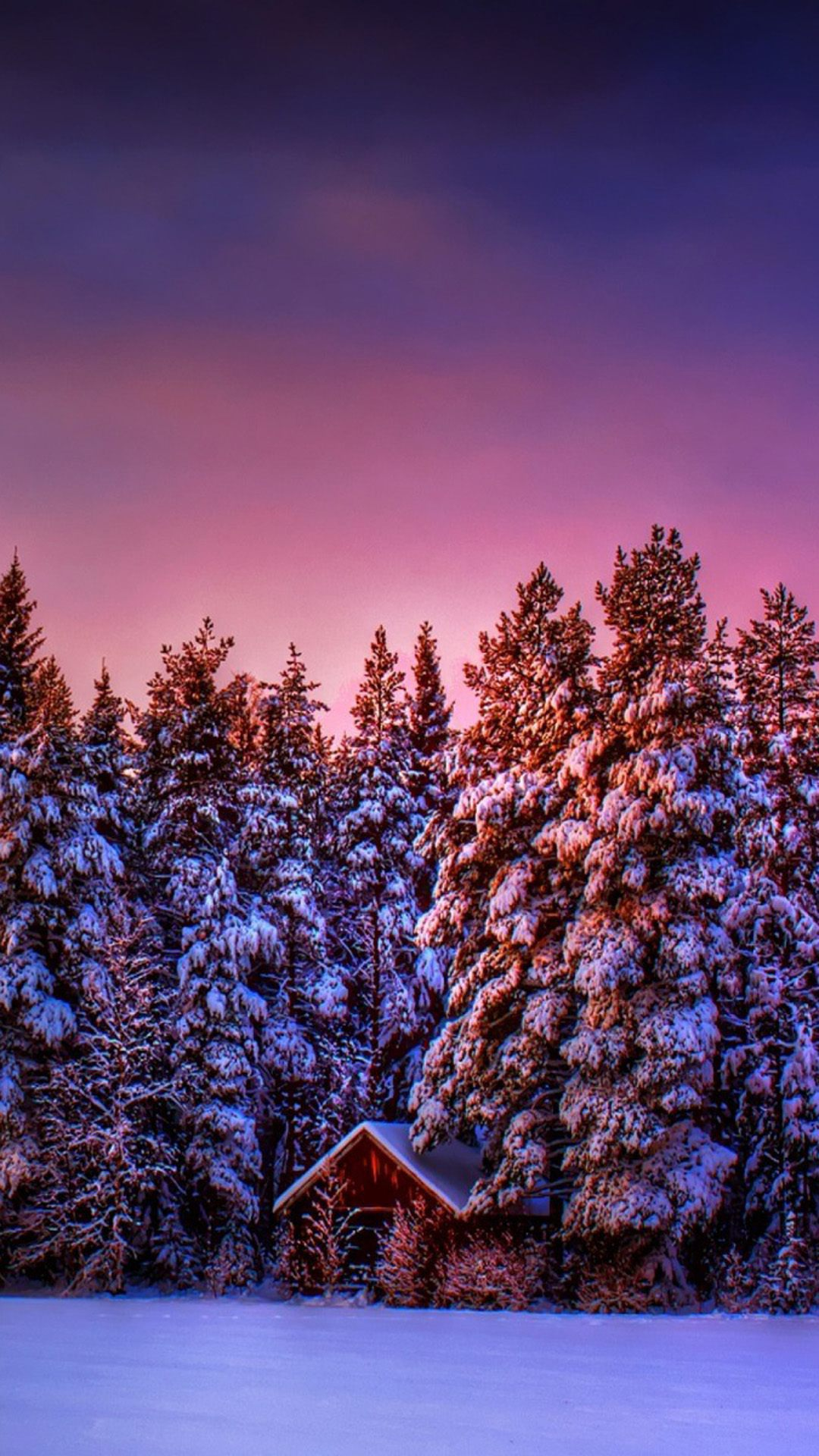 winter violet sky trees house 1080x1920
