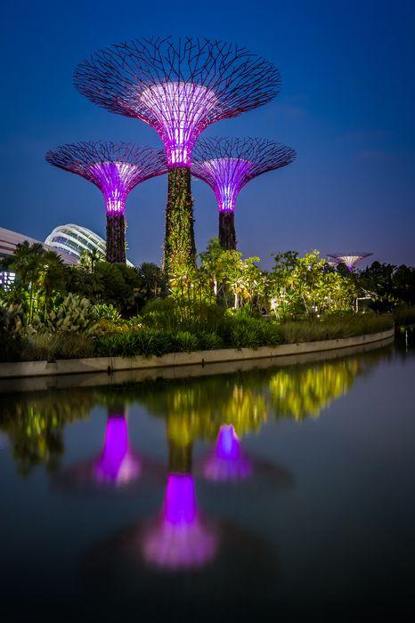 singapore garden sky violet water travel clouds season sunny scenery