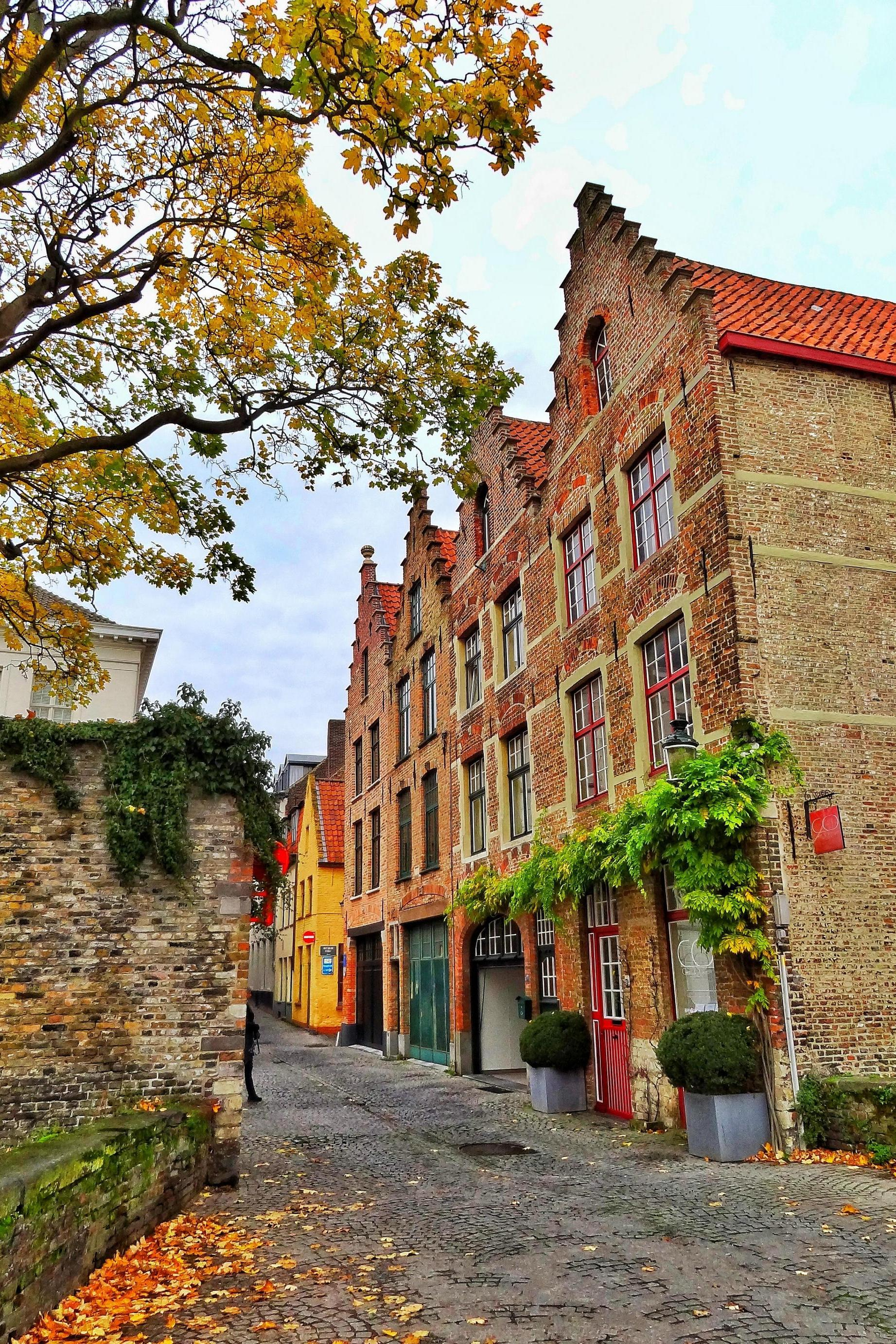 belgium brugge houses autumn atmosphere street leaves