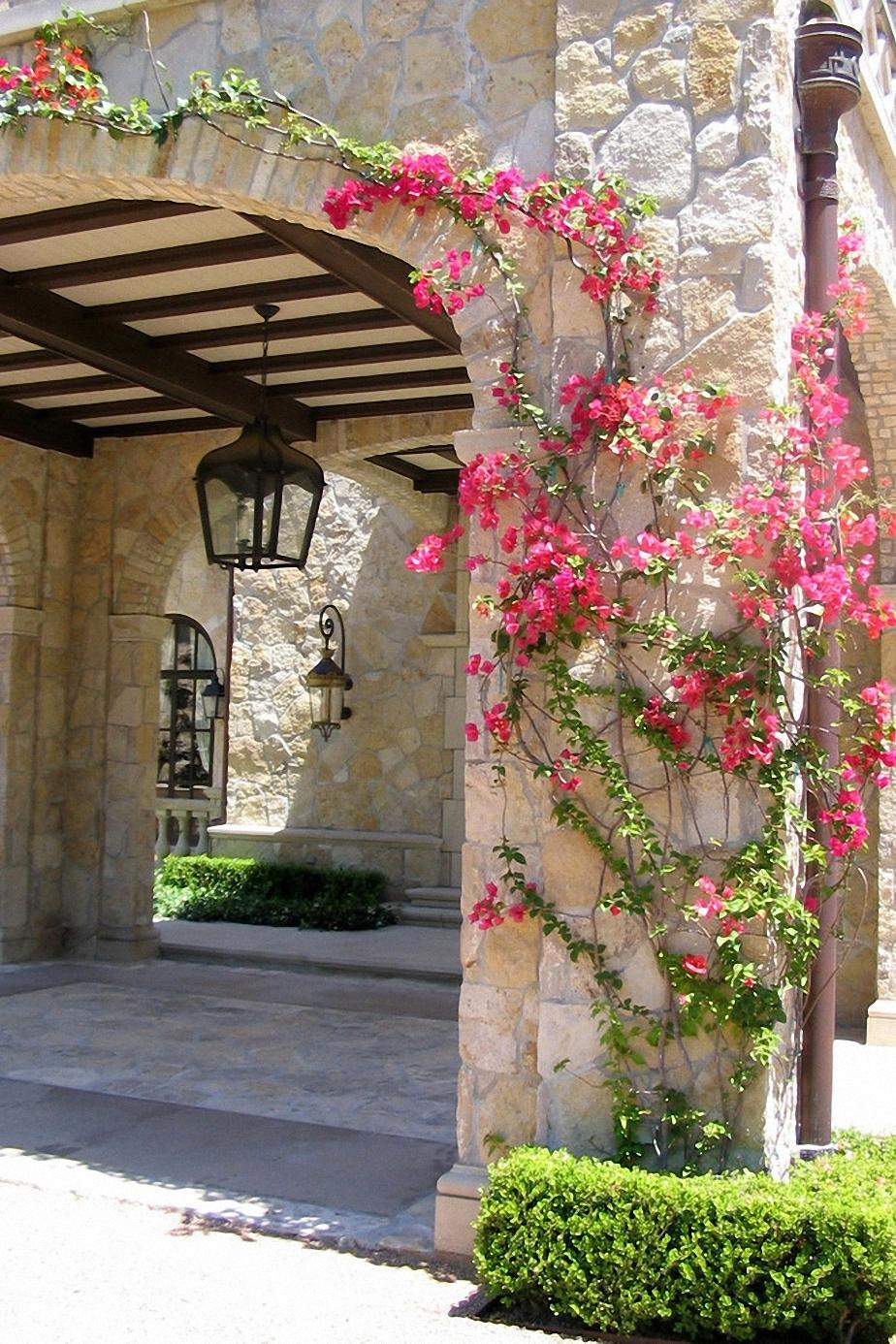 greece flowers architecture