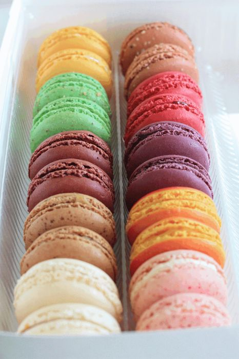 macaron colorful box order tasty food photo