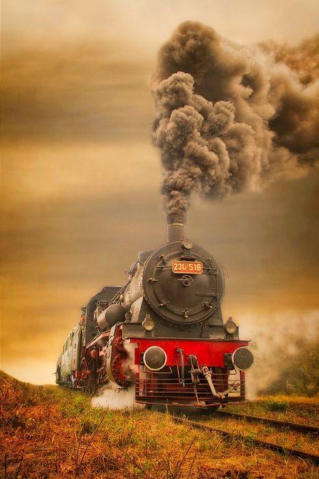 train smoke railway grass autumn travel