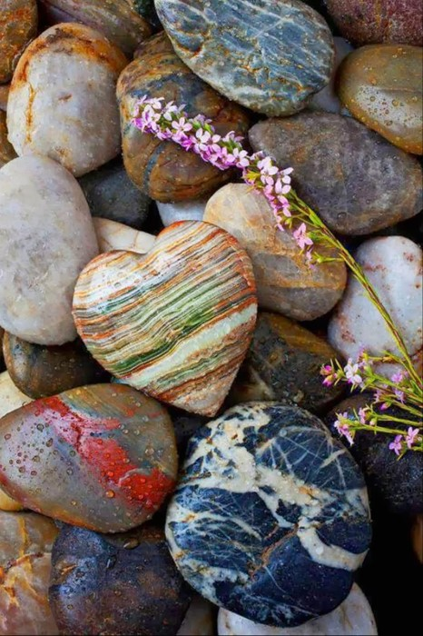 stones macro nature closeup texture group color healthy many