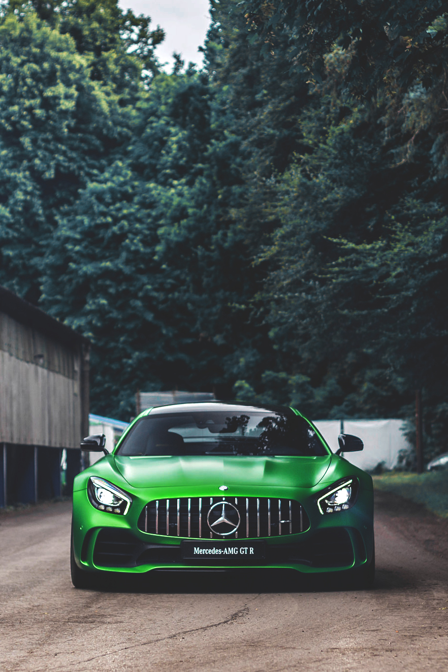 mercedes amg gtr green sportscar competition race road asphalt motion trees