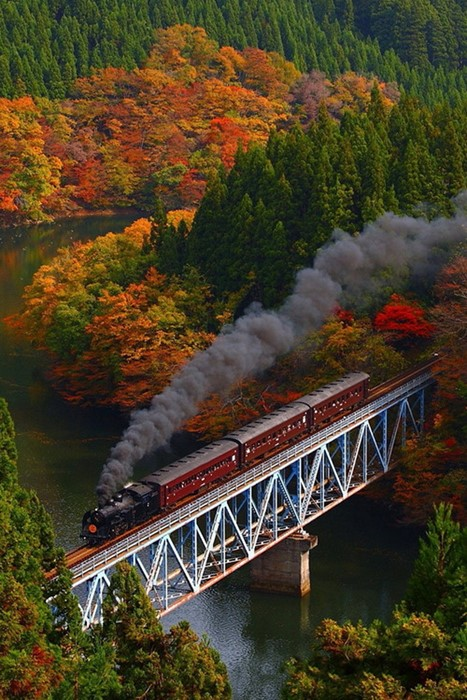 bridge train autumn structure sky landmark architecture river landscape