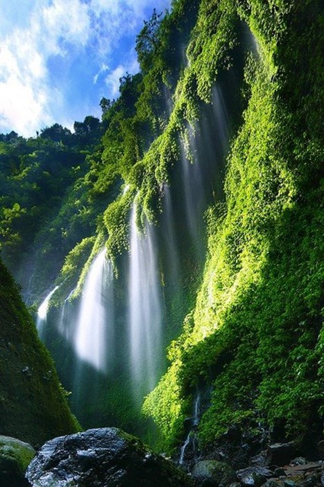 waterfall nature river wood outdoors leaf travel landscape tree mountain