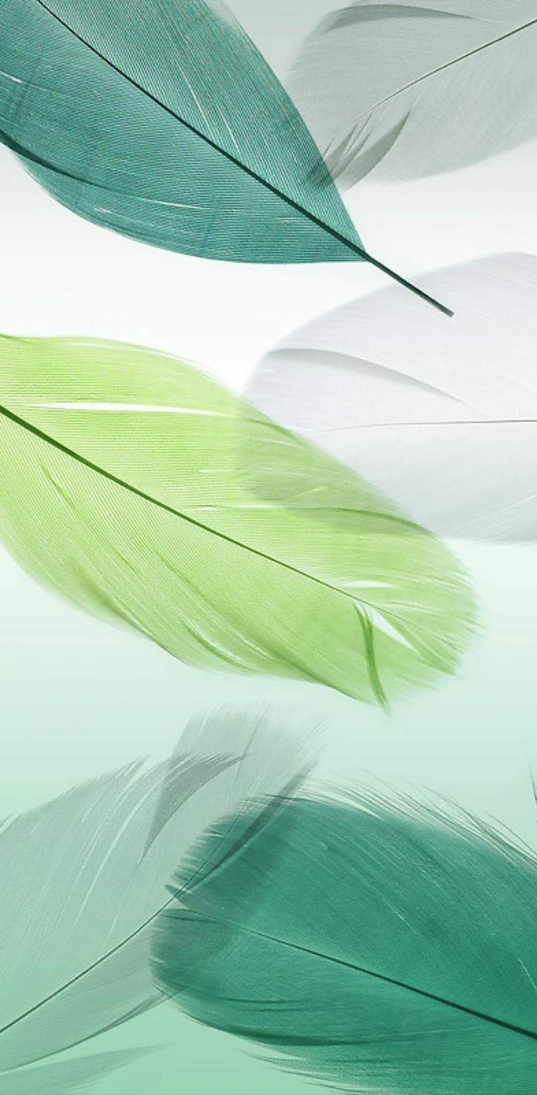 background abstract leaf nature flora bright graphic illustration color texture art design