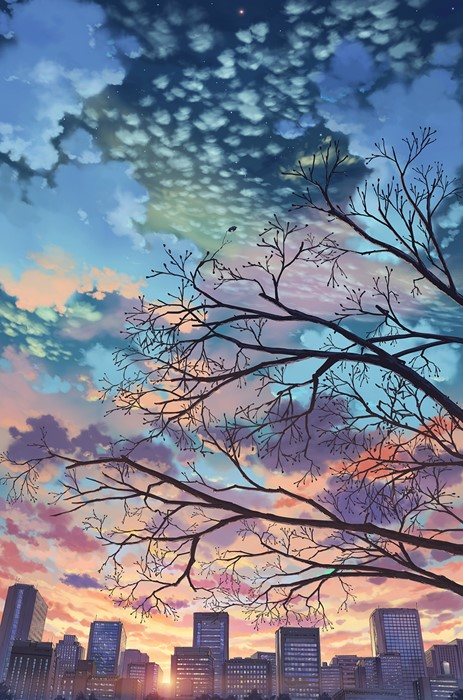 background landscape tree sky nature dawn sunset evening dusk light color desktop